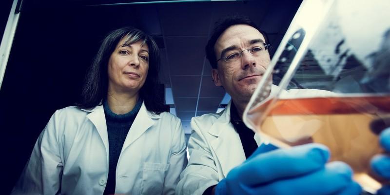 Drs. Hélène Paradis and Robert Gendron