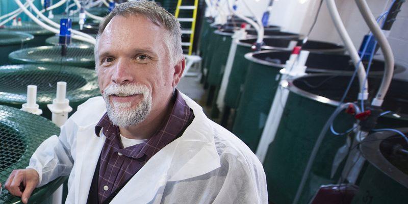 Dr. Matt Rise