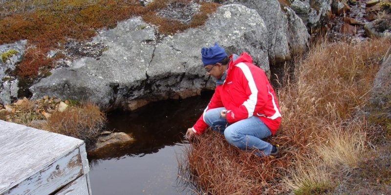 researcher taking water from a brown stream