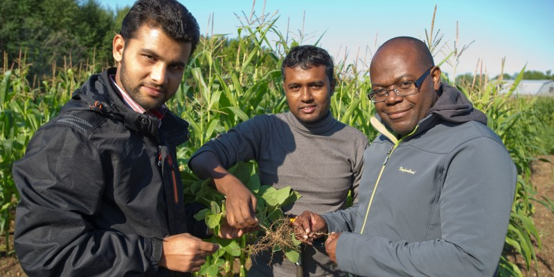 Dr. Raymond Thomas, right, and graduate students and project collaborators Muhammad Zaeem and Md Hossen.
