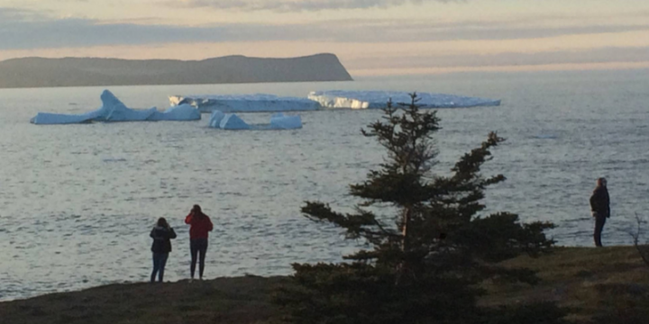 Icebergs and pepole