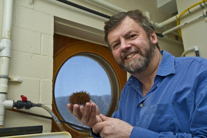 Dr. Paul Snelgrove is associate scientific director of OFI.