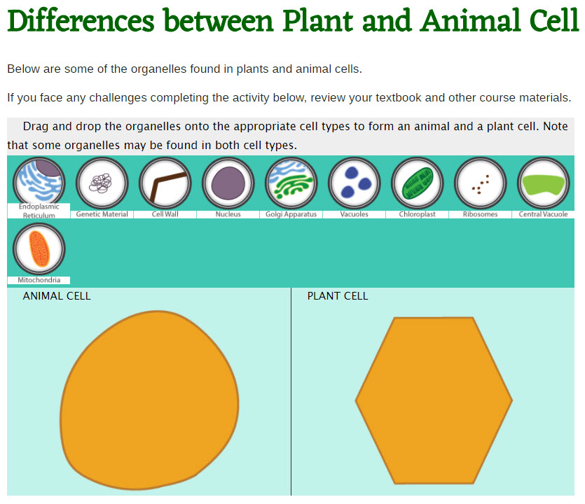 A screen shot of a drag and drop game students can complete to learn differences between plant and animal cells.