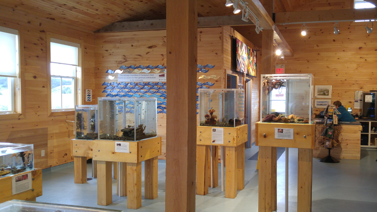 Classes currently offered by the Department of Ocean Sciences will be mounted in Champney's West, a small community located in Trinity Bay, which is home to an aquarium and teaching laboratory.